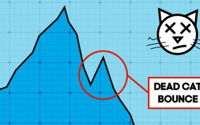 Has The Melbourne Property Market Bottomed Out Or Could It Be A Dead Cat Bounce?